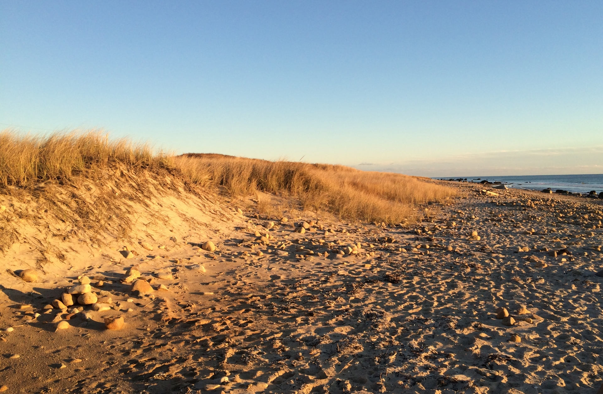 beach-dunes